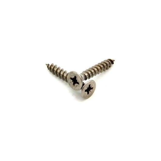 12mm dia head x 6mm dia thread x 40mm long Stainless Steel Screws