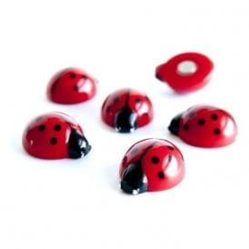 Assorted Animal Style Office Magnets - Lady Bugs (1 set of 6)