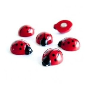 Assorted Animal Style Office Magnets - Lady Bugs