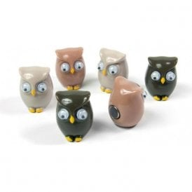 Assorted Animal Style Office Magnets - Owls (1 set of 6)