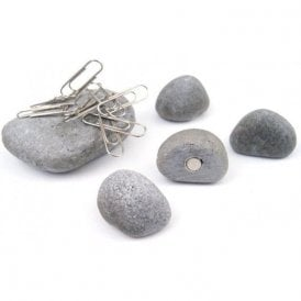 Assorted Deco Office Magnets - Pebbles (1 set of 5)