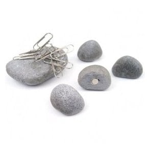 Assorted Decorative Office Magnets - Pebbles