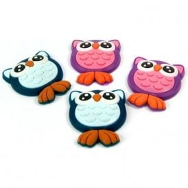 Assorted Rubber Expression Magnets - Owls (1 set of 4)