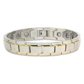 Magnets4 - Unisex Rare Earth Magnetic Bracelet With Fold-over Clasp – Pegasus
